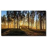 壁アート森林現代キャンバス絵画家の装飾のための絵緑の木霧の朝春風景プリントキャンバスに壁の装飾のため 16 x28
