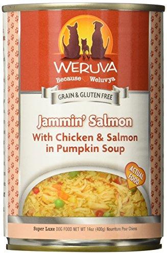 Weruva Jamming Salmon Can Dog Food