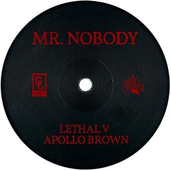 Mr. Nobody (Prod. Apollo Brown) (Cuts by Dj MS)