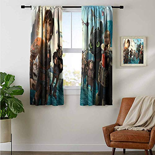 ZhiHdecor Decor Curtains Hiccup How to Train Your Dragon 2 Movie Wide Blackout Curtain Set
