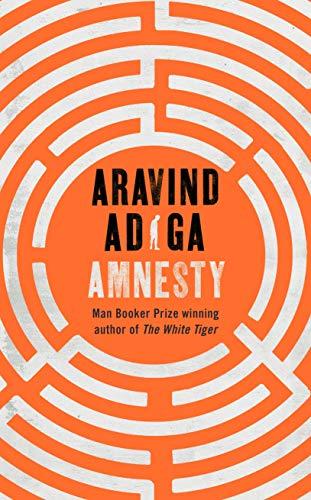 Amnesty (English Edition)