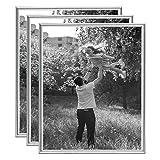 LC DISTRIBUTION - Lote de 3 marcos de fotos de 20 x 25 cm, color plateado