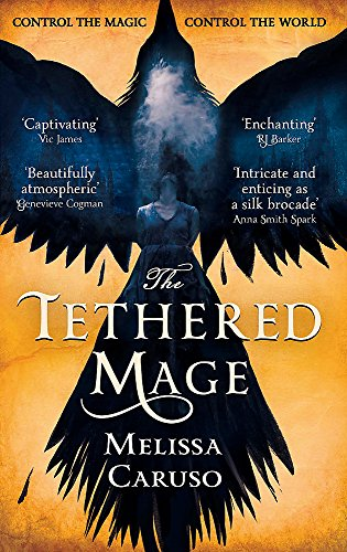 The Tethered Mage (Swords and Fire)