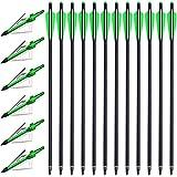 PMSM 12 Pezzi Frecce per Balestra da Caccia Bulloni per Balestra 20 Pollici e 6 Pezzi Punte di Freccia da Caccia, Frecce in Carbonio Balestra per Pratica del Tiro con L'Arco da Caccia (Verde e Verde)