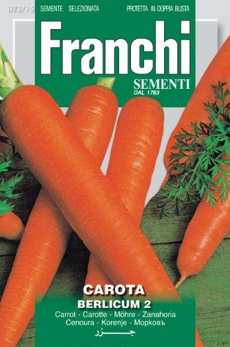 Seeds of Italy Franchi Graines de Carottes Berlicum