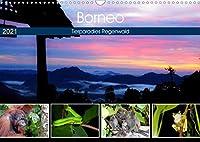 Borneo - Tierparadies Regenwald (Wandkalender 2021 DIN A3 quer): Eine tierische Bilderreise durch Borneo (Monatskalender, 14 Seiten )