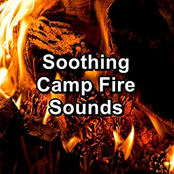 Soothing Camp Fire Sounds