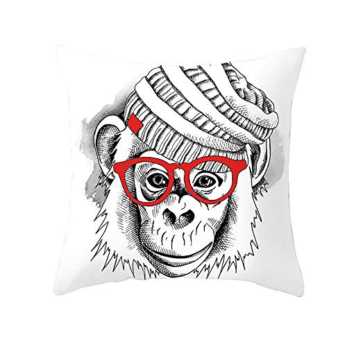 Fundas de Cojines Orangután Funda de Almohada Cuadrado Terciopelo Suave con Cremallera Invisible para Sofá Cama Coche Dormitorio Decoración para Hogar Throw Pillow Case Regalo Pillowcase,45x45cm R2054