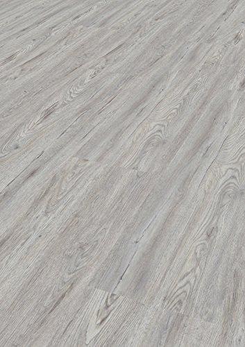 Tepcor Klick Vinylboden Premium Vinylbodenbelag mit Klicksystem Pflegeleichte und wasserfeste Vinyl Bodenbeläge in vielen verschiedenen Farben (Argento)