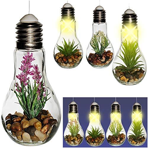 alles-meine.de GmbH 4 Stück _ LICHT Dekogläser - Glas Glühbirnen - Lichterketten - je LED - Blumen & Blüten - Sukkulente & Kakteen - zum Hängen / Aufhängen - 68 cm groß - Pflanze..
