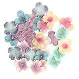 D DOLITY 500x Künstliche Hortensie Blumenblätter Blütenblätter Stoffblumen Blätter Streublüten für Handwerk Herstellung - Gemischte Farbe