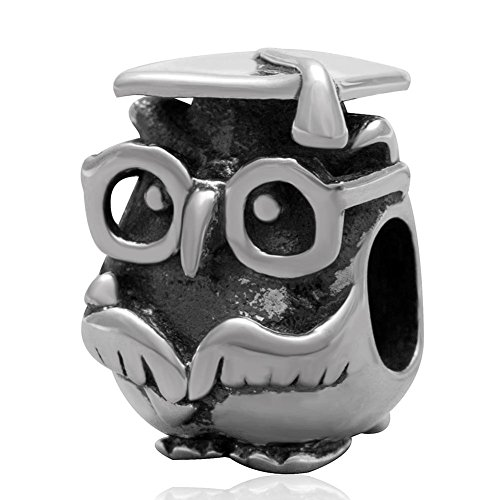 Doctor búho encanto plata de ley 925Animal de la suerte encanto pájaro mascota encanto para encanto pulsera estilo Pandora A