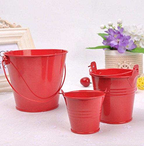 QYL 3Er Shabby Chic Mini Eimer Blume Metall Vasen Dekorative Rustikale Kleine Eisen Eimer,Red