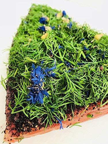 Graved Lachs (gebeizter Lachs) Nordic Arctic mit Aquavit , nordischen Gewürzen, frischem Dill und Kornblumen 1.1kg
