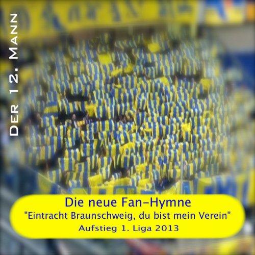 Eintracht Braunschweig, Die Fan-Hymne (Aufstieg 2013)