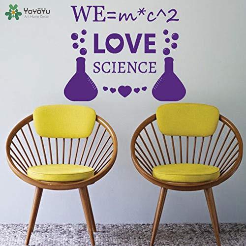 YIYEBAOFU bebaarde draak muur stickers, Muursticker Creatieve Liefde Wetenschap Scheikunde Formule Vinyl Muursticker School Familie Modern Leven