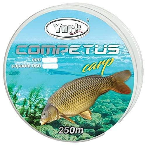 York Competus Carp - Sedal de Pesca (250 m), Negro, 0,32mm / 20kg