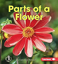 book of flowers and plants pdf
