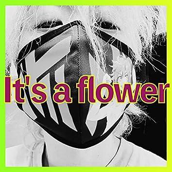 It's a flower