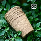 JoaSinc macetas de fibra biodegradables de 8 cm con 48 macetas, macetas redondas para...