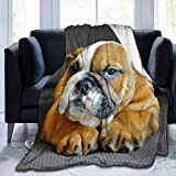 Women Men Boys Girls Wearable Blanket Wrap Cozy Soft Warm Throw Blanket Robe for Studying Reading Snuggling Napping, Large Unique English Bulldog Puppy Dog, 80'x60'