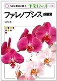 ファレノプシス―胡蝶蘭 (NHK趣味の園芸 作業12か月)