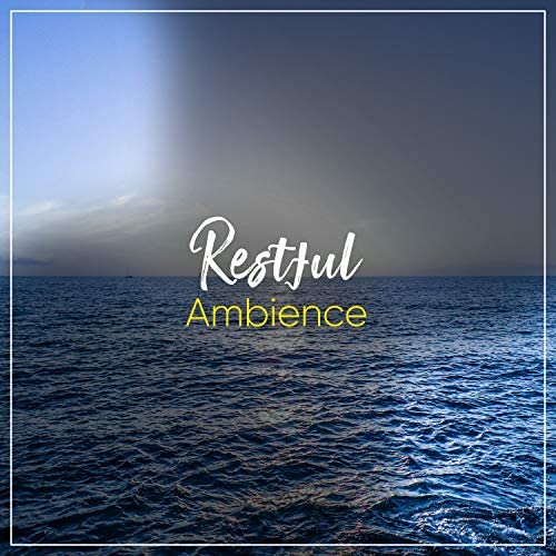Loopable Ambience & Mother Nature Sound FX