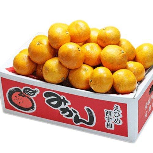 「訳ありみかん3」国安青果 訳ありみかん3kg(3キロ×1箱)ミカンのトップクラスのブランド愛媛西宇和産 フルーツ 果物 みかん