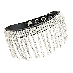 diamond fringed dog collar