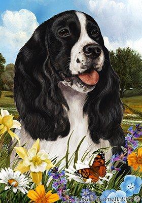 Best of Breed Springer Spaniel noir et blanc - pavillons de jardin de fleurs d'été