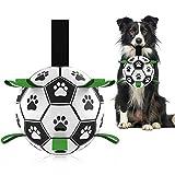 Hetoo Interaktives Hundespielzeug, Fußball, mit Greif-Laschen, langlebige Hundebälle für kleine und mittelgroße Rassen, Wasserspielzeug, geeignet für drinnen und draußen…