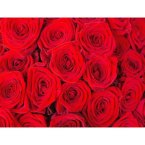 Fondo de fotografía de patrón Floral tablón de Madera Fondo de Fiesta de Flores decoración de cumpleaños Fondo de Vinilo fotográfico A15 7x5ft / 2,1x1,5 m