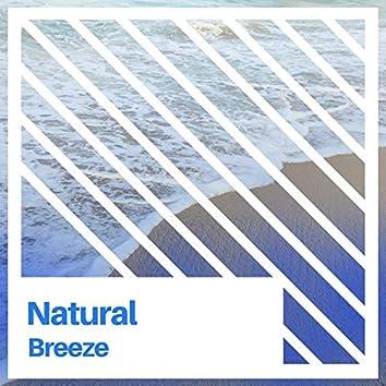 # 1 Album: Natural Breeze