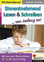 Sinnentnehmend Lesen & Schreiben ... von Anfang an!: Mit nur drei Buchstaben (A, O, M) zum Erfolg