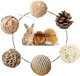 Rabbit Toys, Hamster Bunny Chew Toys,Natural Wooden Guinea Pig Toys Boredom Breakers, Grass Balls,Gerbil Toys, Guinea Pig Treats, Small Pet Toys Rattan Balls (Balls)