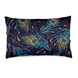 Wozukia Tails of Peacocks Throw Pillow Cover 12x20 Inch Fashionable Peacock Feathers Colorful Cotton Linen Blend Printed Cushion Cover Couch Pillow Case Sham Pillowcases