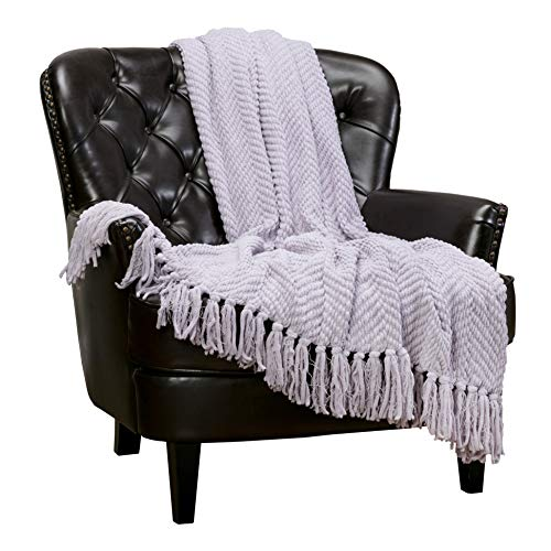 Chanasya Textured Knitted Super Soft Throw Blanket with Tassels Warm Plush Lightweight Fluffy Woven Blanket for Bed Sofa Couch Cover Living Bed Room Purple Throw Blanket (50x65 Inches) Mistylilac