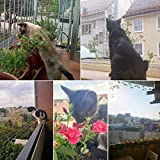 Zoom IMG-1 focuspet rete protettiva per gatti