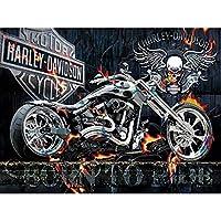 大人のためのDIY5Dダイヤモンドペインティングキットキットナンバーキットによるオートバイの頭蓋骨ダイヤモンドアートでペイント家の装飾のためのDIY、16x20インチ(m4-474)