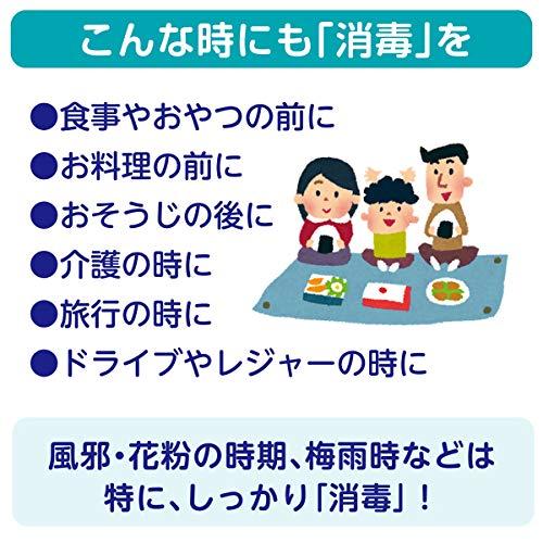 日本製紙クレシア スコッティ ウェットティシュー 消毒 30枚