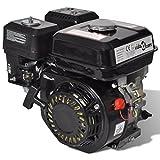 Festnight 6,5 HP 4,8 kW Motor de Gasolina con Arranque Eléctrico Color Negro