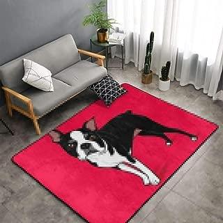 NiYoung Bedroom Living Room Kitchen King Size Area Rug Home Decor - Boston Terrier Dog Red Floor Mat Doormats Quick Dry Bath Mat Yoga Mat Throw Rugs Runner (60 x 39 Inch)
