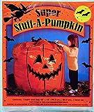 SUNHILL INDUSTRIES-IMPORT C503 Stuff A Pumpkin Bag Decoration, Orange