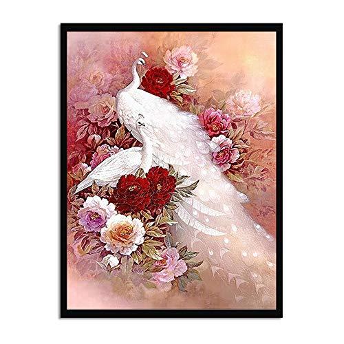 WSNDGWS Beautiful Rose Woman Decoración para el hogar Pintura Moderna Decoración para el hogar Pintura al óleo Sin Marco B1 20x30cm