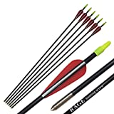 PA 25' 31' Fiberglass Arrows Children Arrows Archery Target Shooting Hunting Practice Arrows for Recurve Bow (25', 6pcs)