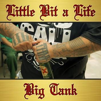 Little Bit a Life