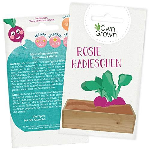 Radieschen Samen: Premium Radieschen Saatgut für Kinder und Erwachsene – Gemüse Samen für ca 100 Pflanzen – Rosie Radieschen Garten Pflanzen Saatgut für Kids – Garten Geschenke, Samen Gemüse OwnGrown