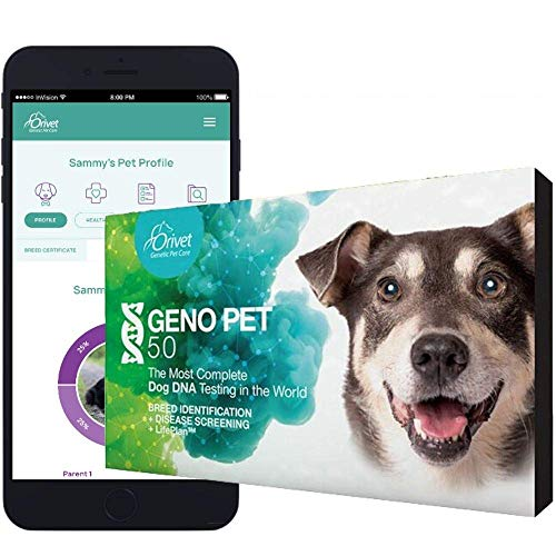 Top 10 best selling list for youtube dog dna test