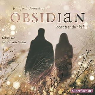 Obsidian. Schattendunkel (Obsidian 1) Titelbild
