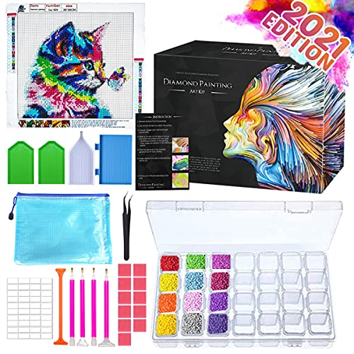 Zoncolor Diamond Painting Kits Art Accessories - Diamond Painting Kit for Adults Kids Tools Pen Gem Paint Drawing Art Supplies Dots Craft Tweezers Beads Roller Arts and Crafts with Storage Containers